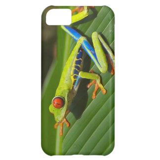 Tree Frog iPhone 5C Case