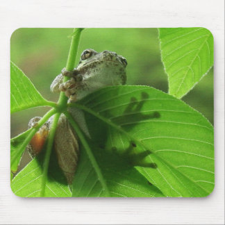 Tree Frog Leaf Shadows Mouse Mat