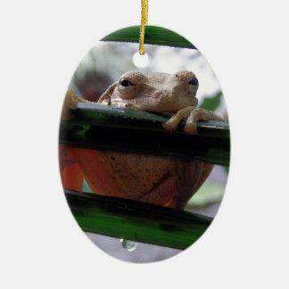 tree frog on a leaf ceramic oval decoration