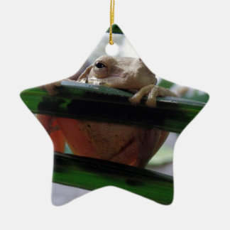 tree frog on a leaf christmas ornament