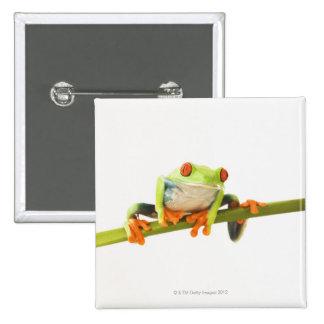 Tree frog on stem 15 cm square badge