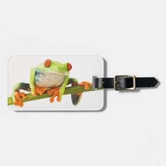 Tree frog on stem luggage tag