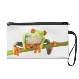 Tree frog on stem wristlet