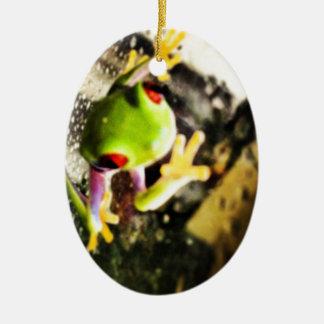Tree frog photo design ceramic oval decoration