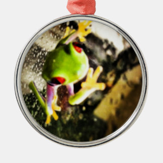 Tree frog photo design christmas ornament