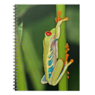 Tree Frog Photo Spiral Notebook