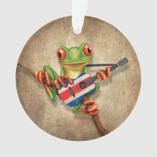 Tree Frog Playing Costa Rica Flag Guitar