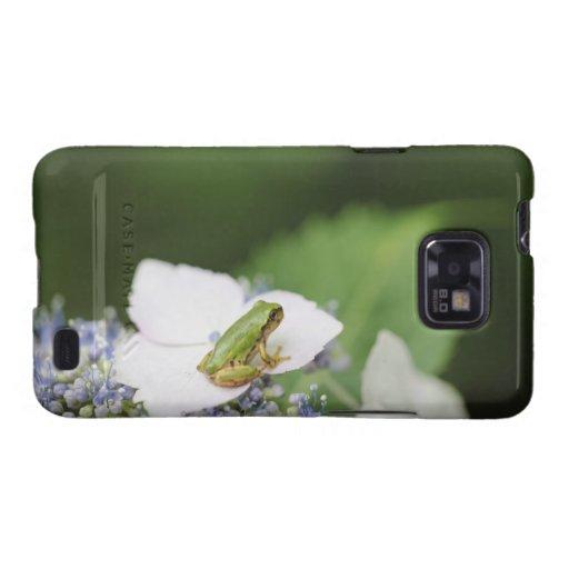 Tree Frog Sitting on a Hydrangea, Hyogo Samsung Galaxy Case