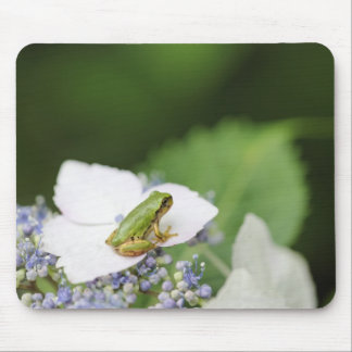 Tree Frog Sitting on a Hydrangea Hyogo Mouse Pad