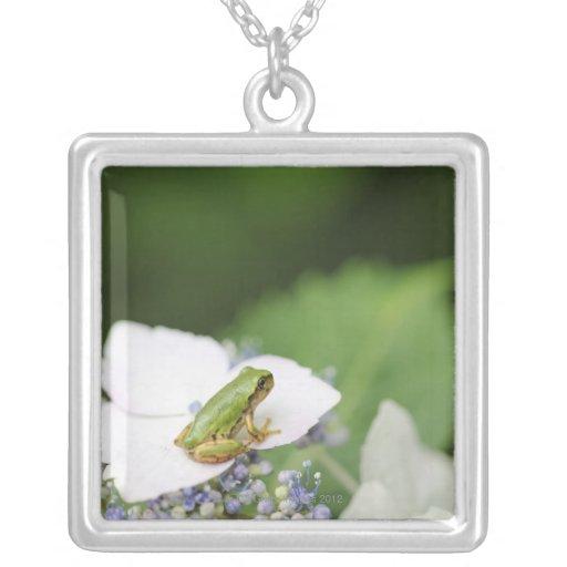 Tree Frog Sitting on a Hydrangea, Hyogo Necklace