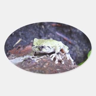 Tree Frog Oval Sticker