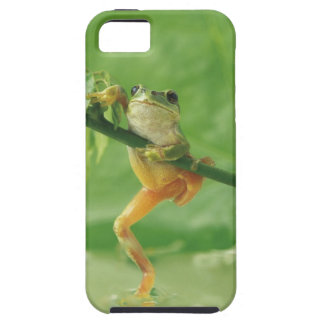 Tree Frog Tough iPhone 5 Case