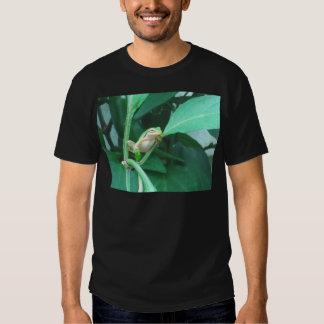 Tree Frog Tshirt