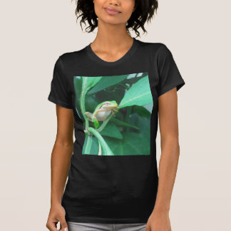 Tree Frog Tshirts