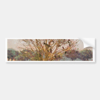 Tree full of large birds bumper sticker