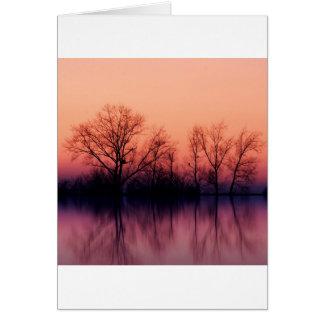 Tree Gloomy Wood Card