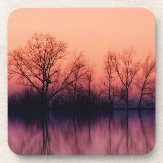 Tree Gloomy Wood Coasters