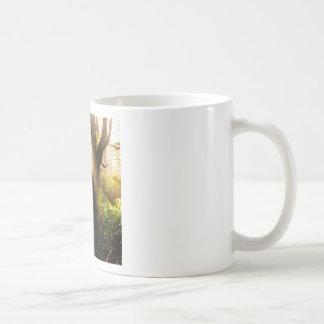 Tree Gloomy Woods Mugs