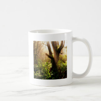 Tree Gloomy Woods Coffee Mugs