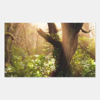 Tree Gloomy Woods Rectangular Sticker