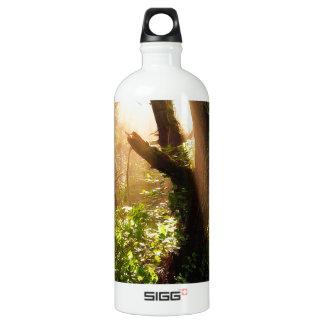 Tree Gloomy Woods SIGG Traveller 1.0L Water Bottle