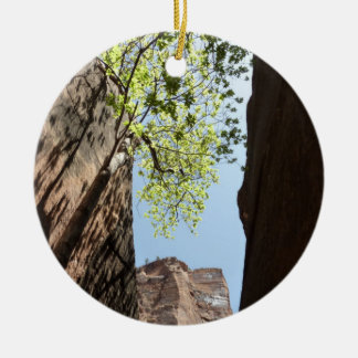 Tree Growing Between Rocks at Zion National Park Round Ceramic Decoration