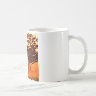 Tree Horse Farm Sunrise Kentucky Coffee Mug