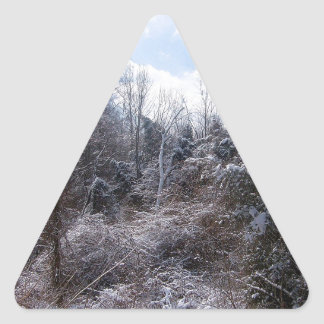 Tree Icey Frost Triangle Sticker