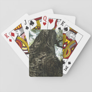 Tree in Beaconhill Park Victoria BC Canada Playing Cards