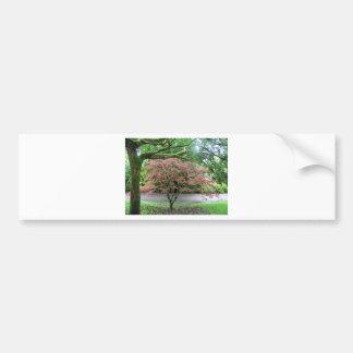 tree in bloom beside the Blarney Castle,Ireland Bumper Sticker