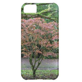 Tree in bloom Blarney Castle , Ireland iPhone 5C Case