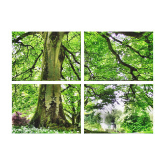 Tree in Greenwood Canvas Art Print Gallery Wrap Canvas
