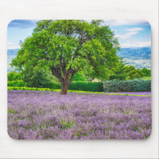 Tree in Lavender Field, France Mouse Mat
