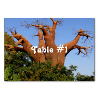 Tree in Madagascar Table Cards