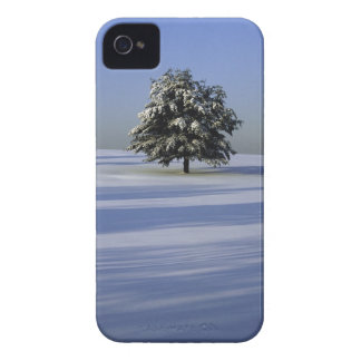 Tree in snow covered landscape iPhone 4 cases