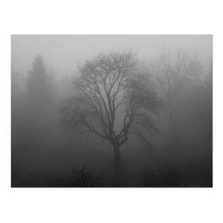 Tree in the fog postcard