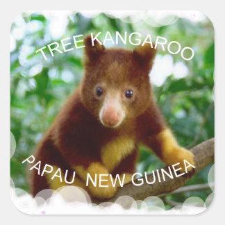 Tree kangaroo square sticker
