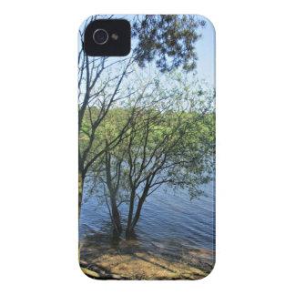 Tree Lake iPhone 4 Covers