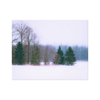 Tree Landscape In the Snow Gallery Wrap Canvas