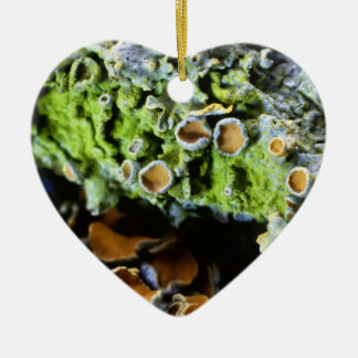 Tree Lichen Super Macro photography Ceramic Heart Decoration