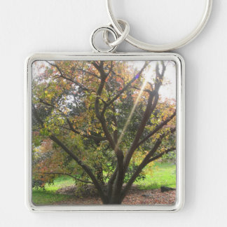 Tree Light Ray Keychain