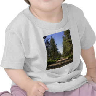 Tree lined dirt road t shirts