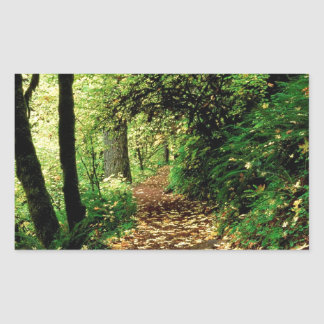 Tree Maple Lined Silver Creek Rectangular Sticker