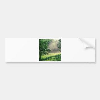 Tree Morning Meadow Bumper Sticker