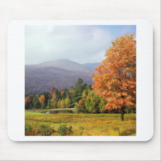Tree Mount Mansfield Vermont Mousepads
