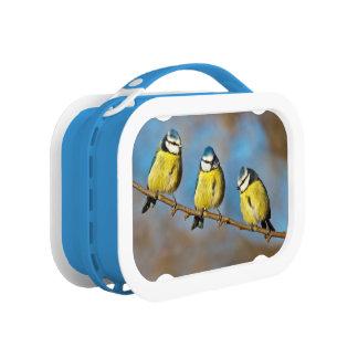 Tree-o Lunch Box