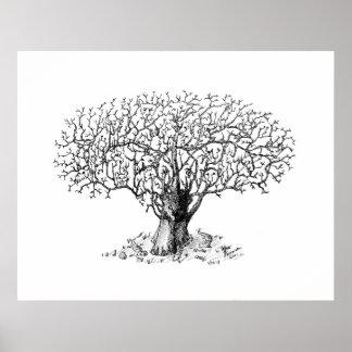 Tree of Life - animals Print