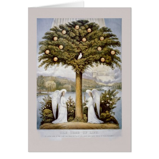 &,'Tree of Life' Card