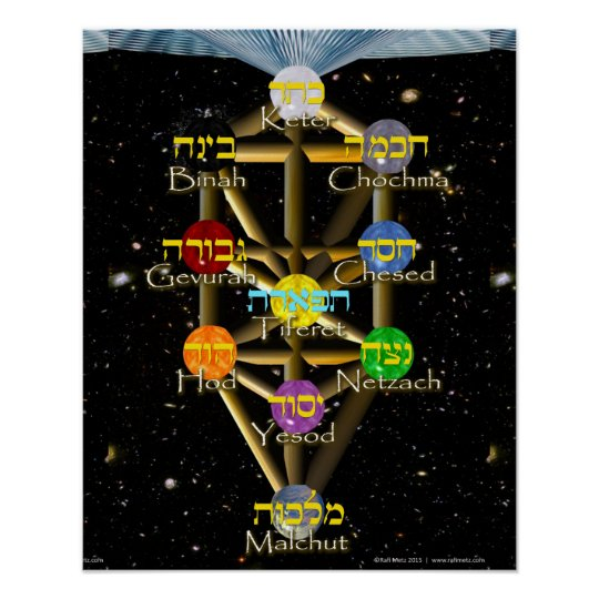 Tree of Life diagram with Hebrew and English