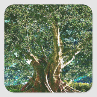 Tree of Life Green Square Sticker